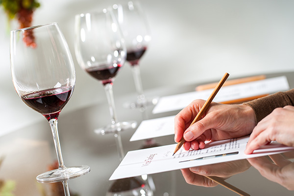 MDC-Weinimport-Leistungen-Wein-Produktexpertise