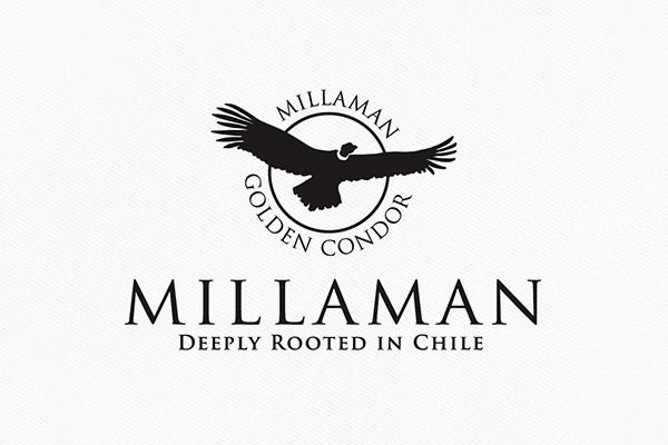 Weingut Millaman